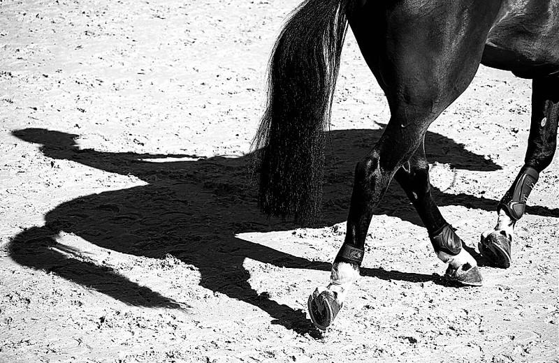 (photo (c) GCT/S.Grasso)