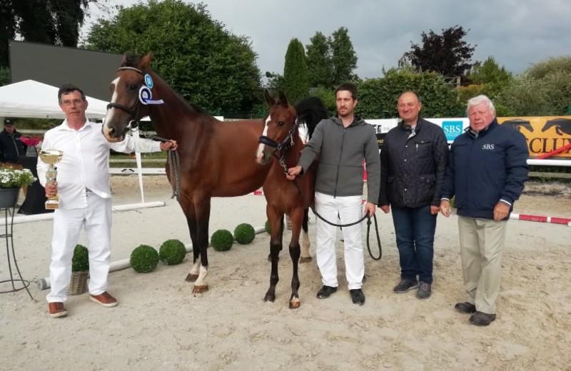 Le titre de « champion suprême des foals Libramont 2021 » a été attribué par le jury à une… championne : BELLE DU MAS D'EOLE Z, présentée par Jean Lefort (CR)