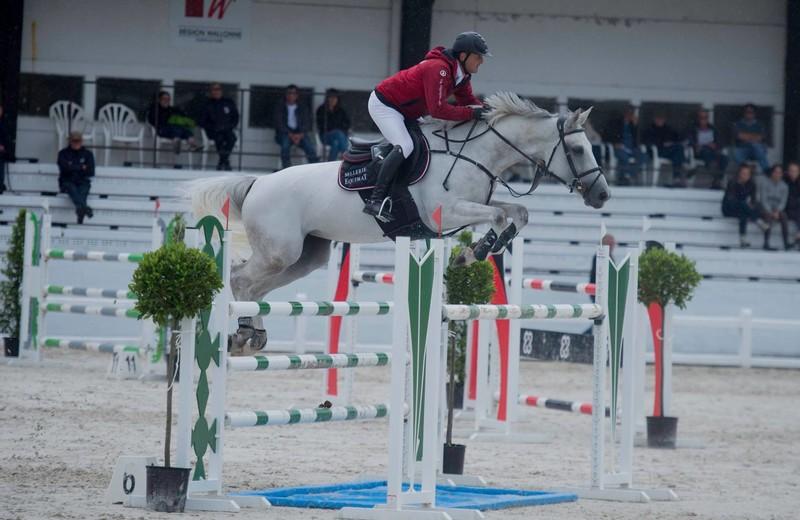EVER D'HOOGPOORT (Clinton x Nabab de Rêve) en 2017 à l'Ecole d'équitation de Gesves
