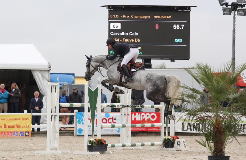 FAUVE-D.B. (Gitano/Clinton - fokker: N. Bouillart à B-1180 Uccle) gereden door Caio Carvalho Belgisch kampioen van de 6-jarigen (foto (c) Studio Temps de Poses)