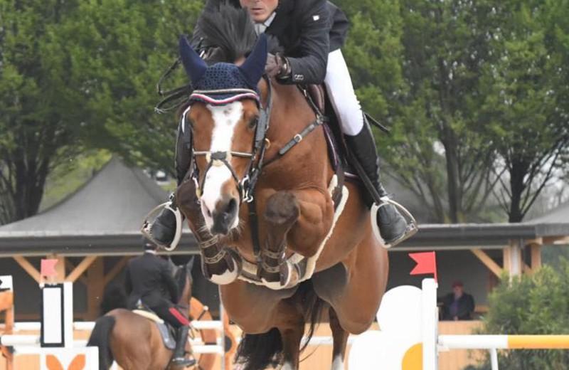 GEORGE ALEXANDER in maart 2019 op de Etrea Horse Show in Busto Arsizio (Stefano Sacchi Team)