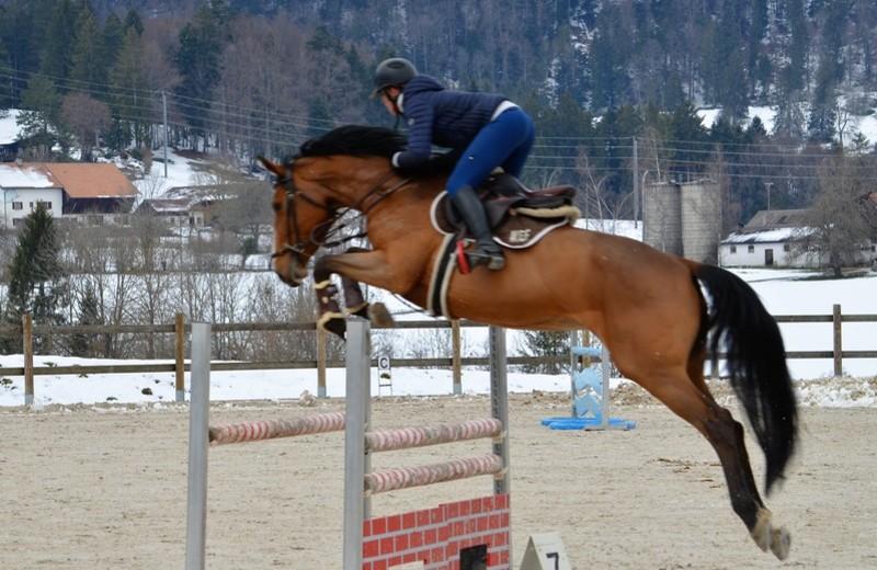 Verkocht in Zwitserland, loopt ISIS DE LA HAIE R.O.+.  internationaal sinds 2020 onder Johanne Hermann, met de bedoeling dat Audrey Geiser (5*) haar kan opnemen als wedstrijdpaard.