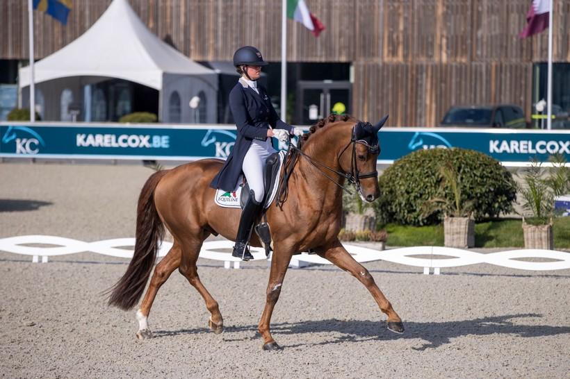 GOLDDREAM VD KEMPENHOEVE (Jazz x Quaterback) sous la selle de la cavalière olympique belge Jorinde Verwimp, ce weekend au CDI3* de Opglabbeek (Dirk Caremans)