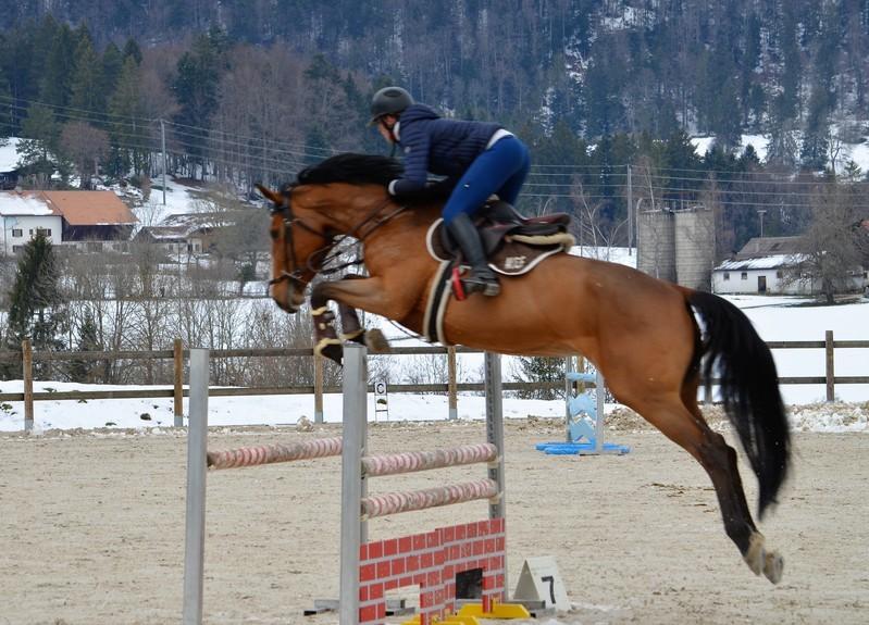 Vendue à la famille Geiser en Suisse, ISIS DE LA HAIE R.O.+ tourne en international depuis 2020 sous Johanne Hermann, dans le but qu'Audrey Geiser, cavalière 5*, puisse l'intégrer dans son piquet.